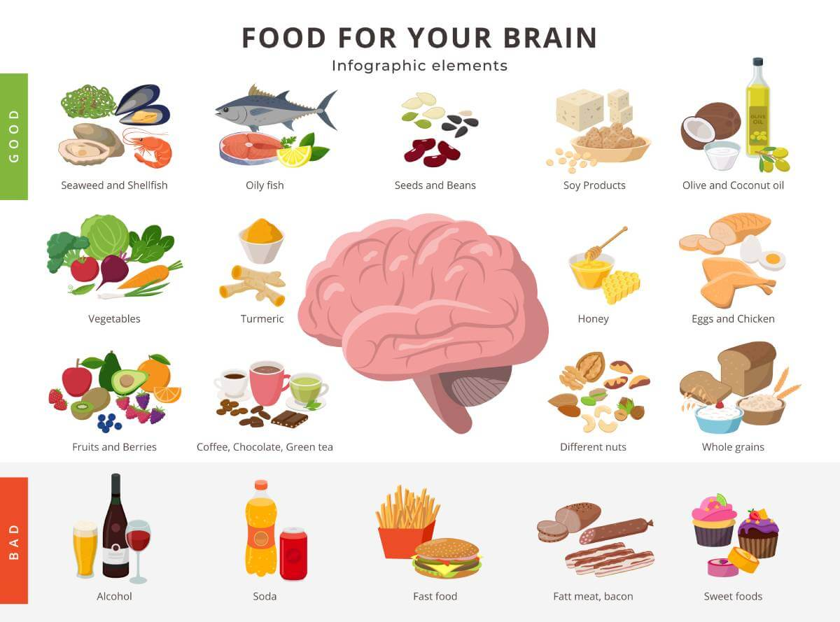 Healthy food and bad food for brain on white background