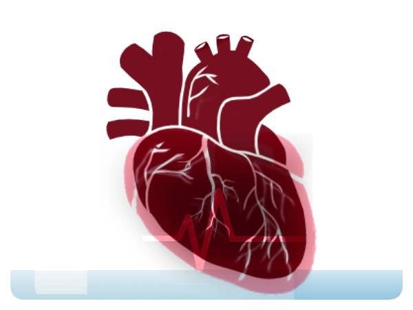 red color heartbeat low water icon